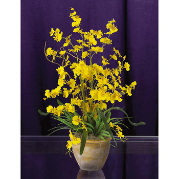 Dancing Lady Silk Orchid Arrangement - Yellow