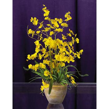 Dancing Lady Silk Orchid Arrangement - Yellow