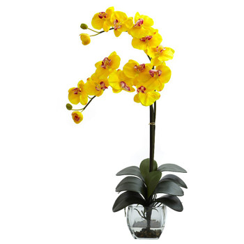 Double Phalaenopsis Yellow Orchid Silk Flower Arrangement with Vase