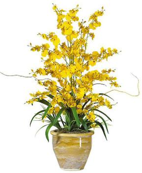 Triple Dancing Lady Silk Flower Arrangement - Yellow