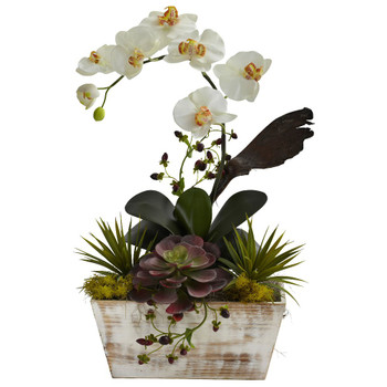 Orchid & Succulent Garden Silk Flower Arrangement w/White Wash Planter