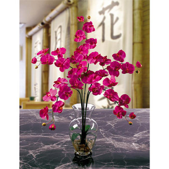 Phalaenopsis Liquid Illusion Silk Arrangement - Beauty