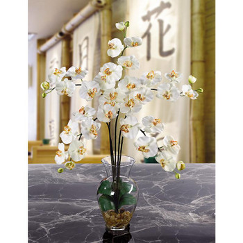 Phalaenopsis Liquid Illusion Silk Arrangement - Cream