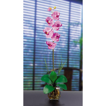 Single Phalaenopsis Liquid Illusion Silk - Mauve