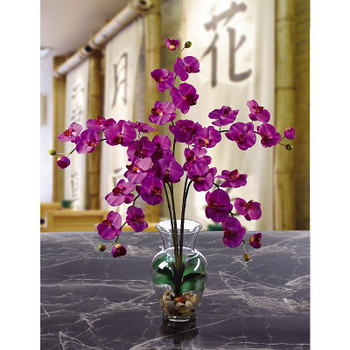 Phalaenopsis Liquid Illusion Silk Arrangement - Orchid