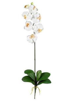 Phalaenopsis Silk Orchid Flower Stems - Cream, Set of 12