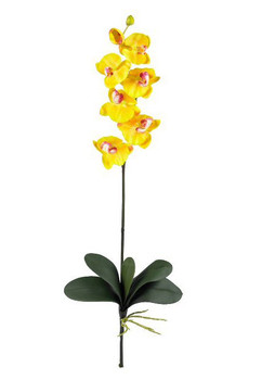 Phalaenopsis Silk Orchid Flower Stems - Gold/Yellow, Set of 12