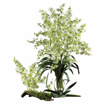 Dancing Lady Silk Orchid Flower Stems - Green, Set of 12
