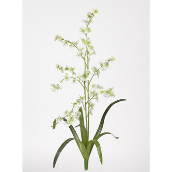 Dancing Lady Silk Orchid Flower (6 Stems) - Green