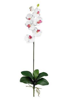 Phalaenopsis Silk Orchid Flower Stems - White, Set of 12