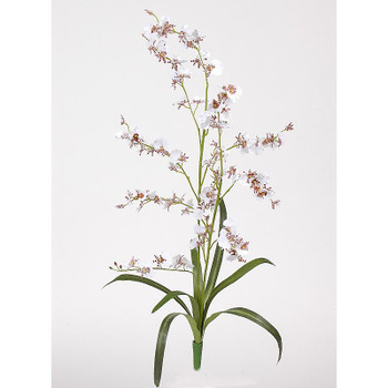 Dancing Lady Silk Orchid Flower (6 Stems) - White