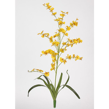 Dancing Lady Silk Orchid Flower (6 Stems) - Yellow