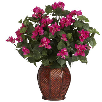 Bougainvillea with Vase Silk Plant