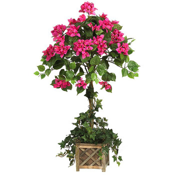 Silk Bougainvillea Topiary with Wood Box