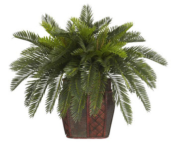 Double Cycas with Vase Silk Plant