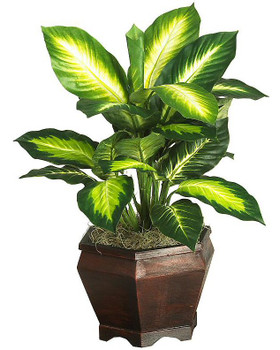 Golden Dieffenbachia with Wood Vase Silk Plant