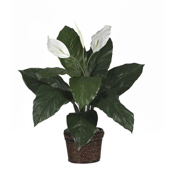 Spathiphyllum Silk Plant with Coiled Rope Wicker
