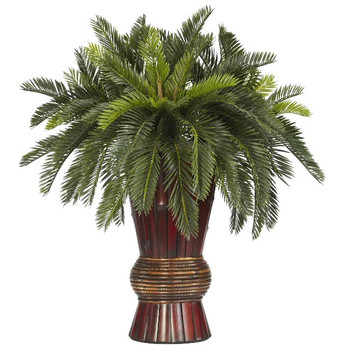 Cycas with Bamboo Vase Silk Plant