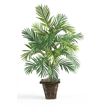 Areca Silk Palm with Wicker Basket