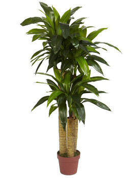 4' Corn Stalk Dracaena Real Touch Silk Plant