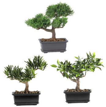"8.5"" Bonsai Silk Plant Collection, Set of 3"