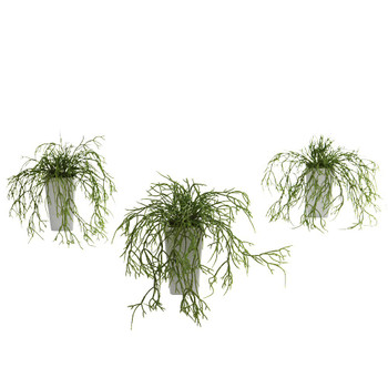 Wild Grass Silk Plant with White Vase, Set of 3