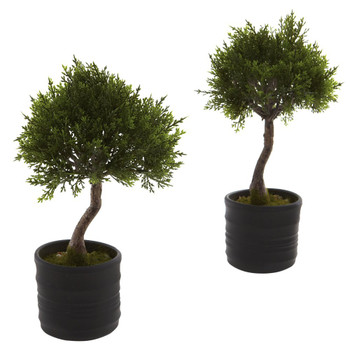 Cedar Bonsai Silk Plant with Planter, Set of 2