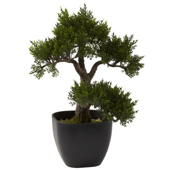 "15"" Cedar Bonsai Silk Plant"