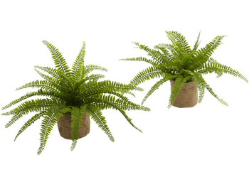 Boston Fern Silk Plant with Burlap Planter, Set of 2