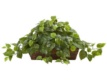 Pothos Silk Plant with Ledge Basket