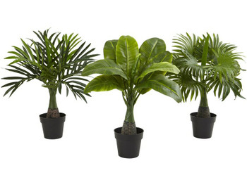 Areca, Fountain and Banana Palm Silk Plants, Set of 3