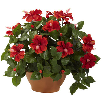 Hibiscus Silk Plant with Clay Planter