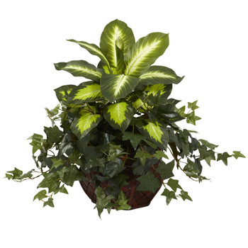 Dieffenbachia & Ivy Silk Plant with Decorative Planter