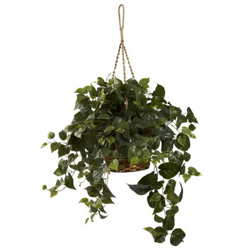 Philodendron Silk Plant Hanging Basket