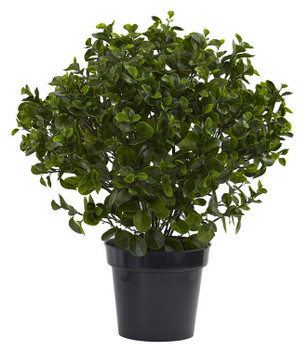 "28"" Peperomia Plant UV Resistant Silk Plant, Indoor Outdoor"