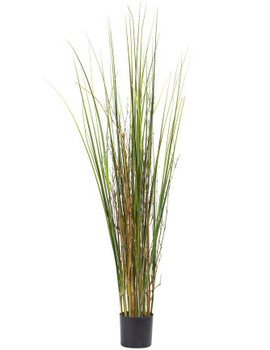 4' Grass and Bamboo Silk Plant
