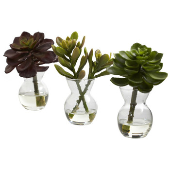 Succulent Silk Plant Arrangements, Set of 3