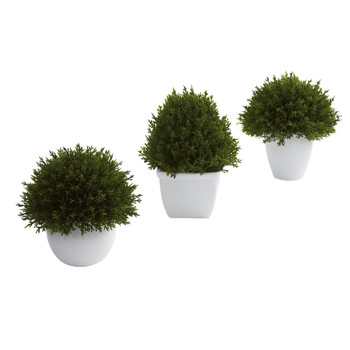 Mixed Cedar Silk Plant Topiary Collection, Set of 3