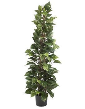 "63"" Pothos Climbing Silk Plant"