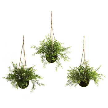 Ruscus, Sedum & Springeri Hanging Basket Silk Plants, Set of 3