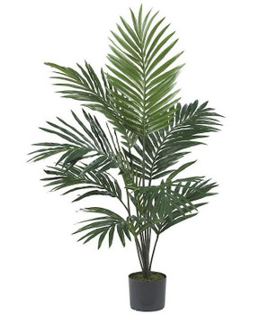 5' Wispy Kentia Palm Silk Tree