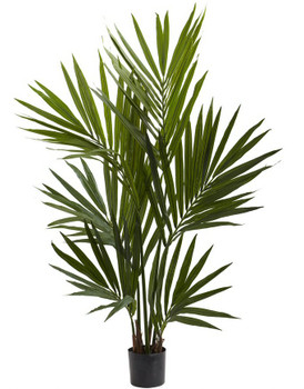 4' Spikey Kentia Palm Silk Tree