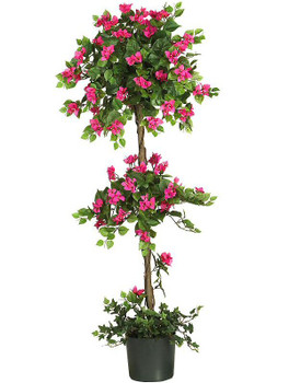 5' Mini Bougainvillea Topiary Tree
