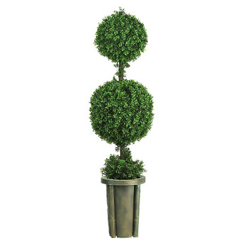 5' Double Ball Leucadendron Topiary, Indoor Outdoor