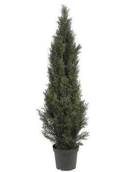 5' Mini Cedar Pine Tree, Indoor Outdoor