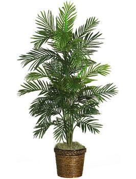 "56"" Areca Palm Silk Tree with Basket"