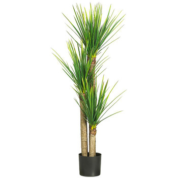 "58"" Yucca Silk Tree"