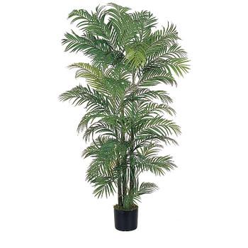 6' Areca Silk Palm Tree