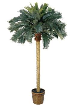 6' Sago Palm Silk Tree