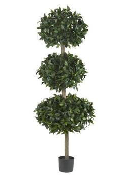 "69"" Sweet Bay Triple Ball Tree"